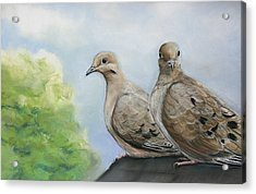 House Sitters Acrylic Print by Charlotte Yealey