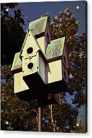 House Sparrow Acrylic Print by JAMART Photography