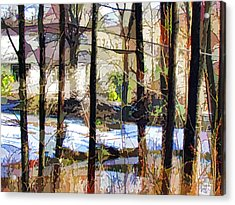 House Surrounded By Trees 2 Acrylic Print by Lanjee Chee