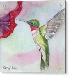 Hovering Ruby Acrylic Print