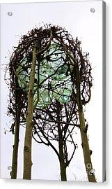 How Art Thou Acrylic Print by Dean Edwards