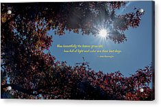 How Beautifully The Leaves Grow Old Acrylic Print by Mick Anderson