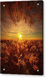 How, In Such Forgetting, Do We Become Acrylic Print by Phil Koch
