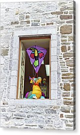Acrylic Print featuring the photograph How Much Is That Dragon In The Window by John Schneider