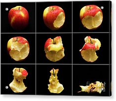 How To Eat An Apple In 9 Easy Steps Acrylic Print