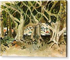 Howley's Banyans Acrylic Print