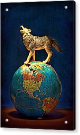 Howling At The Light Acrylic Print by Jeff  Gettis