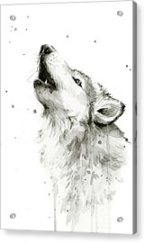 Howling Wolf Watercolor Acrylic Print