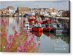 Howth Harbour Acrylic Print by Gabriela Insuratelu
