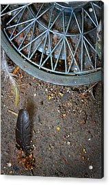 Hubcap And Feather Acrylic Print by Amanda Wimsatt