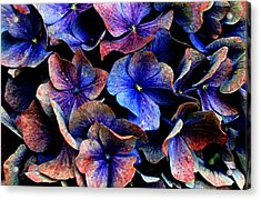 Acrylic Print featuring the digital art Hues by Julian Perry