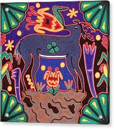 Huichol Deer Acrylic Print by Andrew Osta