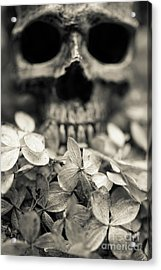 Acrylic Print featuring the photograph Human Skull Among Flowers by Edward Fielding