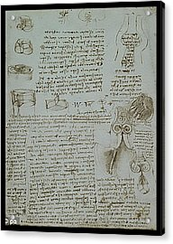 Acrylic Print featuring the painting Human Study Notes by James Christopher Hill
