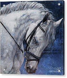 Humble Beauty Acrylic Print by Enzie Shahmiri