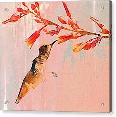 Hummer Art Acrylic Print