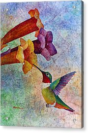 Acrylic Print featuring the painting Hummer Time by Hailey E Herrera