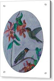 Humming Birds Acrylic Print by Mikki Alhart