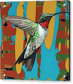 Hummingbird #10 Acrylic Print by David Palmer