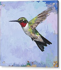 Hummingbird #3 Acrylic Print by David Palmer