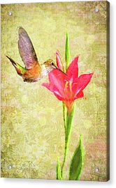 Acrylic Print featuring the digital art Hummingbird And Flower by Christina Lihani