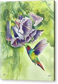 Hummingbird And Trumpets Acrylic Print