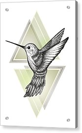 Hummingbird Acrylic Print by Barlena