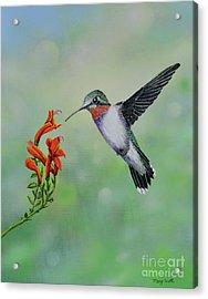 Acrylic Print featuring the painting Hummingbird Beauty by Mary Scott