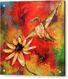 Hummingbird Energy Acrylic Print