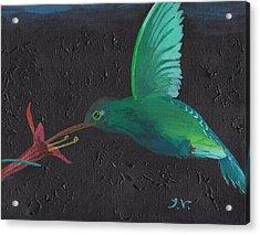 Hummingbird Feeding Acrylic Print