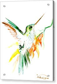 Hummingbird Green Orange Red Acrylic Print by Suren Nersisyan