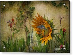 Hummingbirds In My Garden Acrylic Print