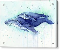 Humpback Whale Mom And Baby Watercolor Acrylic Print by Olga Shvartsur