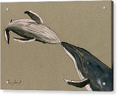 Humpback Whale Painting Acrylic Print