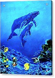 Humpback Whales Hawaii An Reef #14 Acrylic Print by Donald k Hall