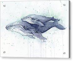 Humpback Whales Painting Watercolor - Grayish Version Acrylic Print by Olga Shvartsur