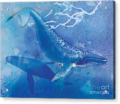 Humpback Whales Acrylic Print by Tracy Herrmann