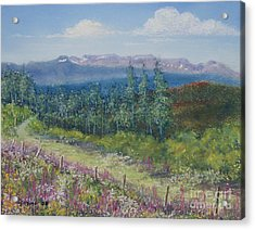Summer Flowers On Hungry Hill Acrylic Print