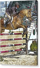 Hunter Jumper Equestrian Acrylic Print by Carrie Cranwill