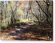 Hunter's Road Acrylic Print by Scott Kingery