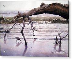 Hunting Island Sculpture Acrylic Print