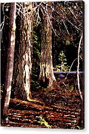 Acrylic Print featuring the painting Huntington Trees by Larry Darnell