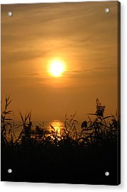 Huron Sunrise Acrylic Print by Sheryl Burns