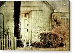 Hurry Home Acrylic Print by Diana Angstadt