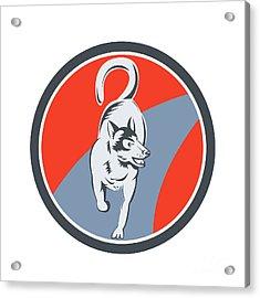 Huskie Sled Dog Circle Retro Acrylic Print