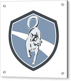 Husky Dog Crest Retro Acrylic Print