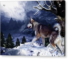 Husky - Mountain Spirit Acrylic Print by Carol Cavalaris