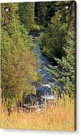 Hyalite Creek Overlook Acrylic Print
