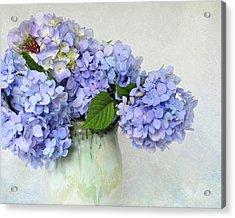 Hydrangea 1 Acrylic Print