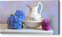 Hydrangea And Wash Basin Acrylic Print